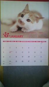 2011年カレンダー猫ちゃん