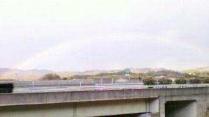 霊園から見えた虹